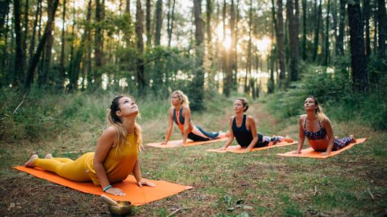 Stage Yoga & Méditation Toulouse : 3, 4 et 5 Juillet